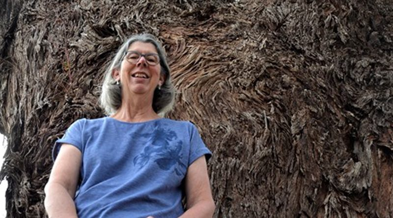 Maldon's Bev Phillips with one of the town's pre-European living treasures - a Eucalyptus melliodora, or yellow box, estimated to be 530 years old.